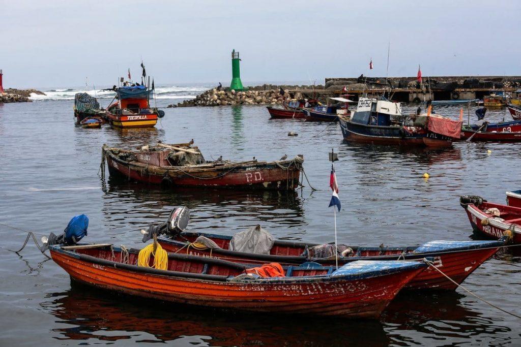 -рыбный-рынок-Чили
