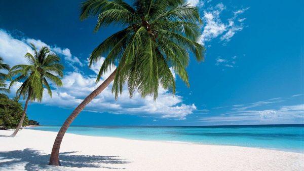 Доминикана, пляж