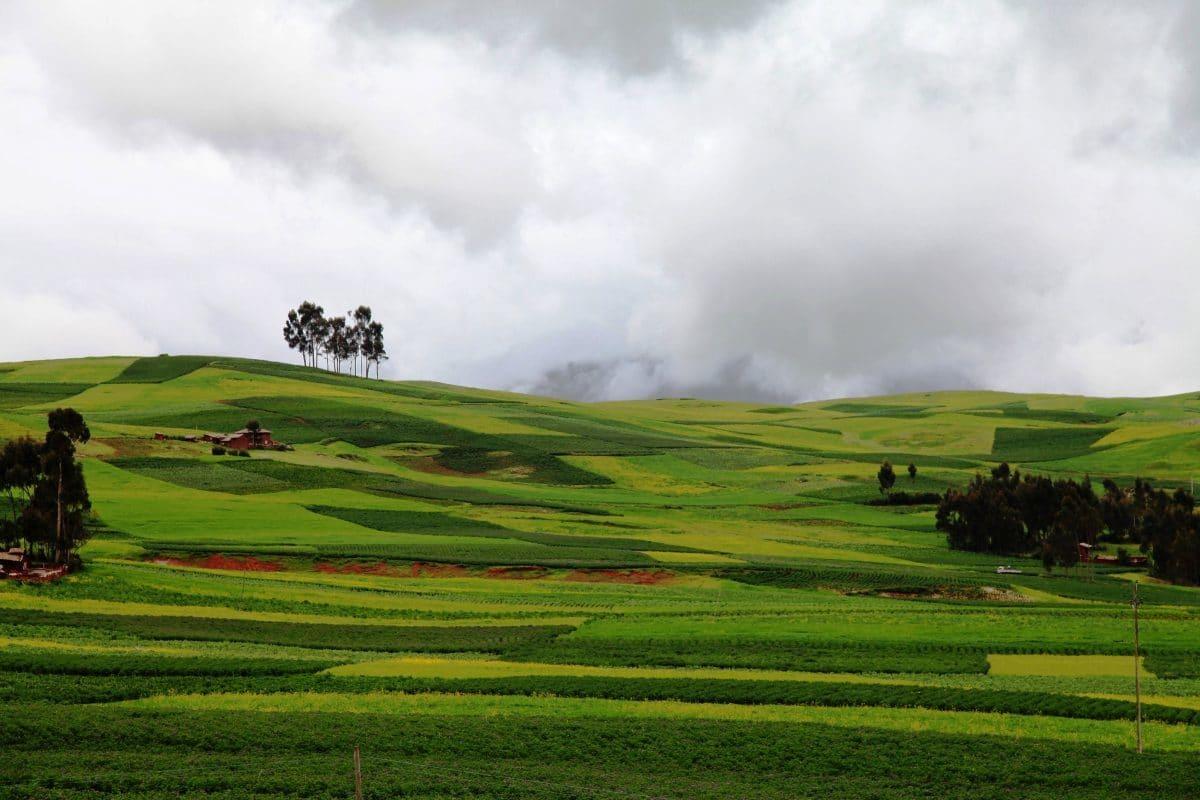 Поля в Куско, Перу