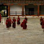 Буддитские монахи