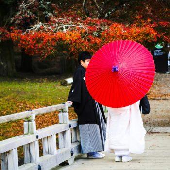 Гейша с зонтом в японском парке
