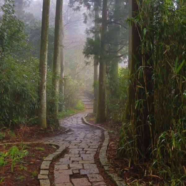 Дорожка в парке, Япония