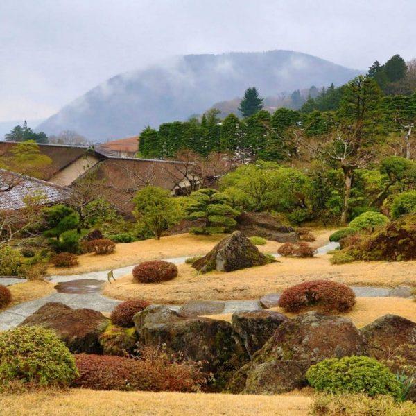 парк в японии весной