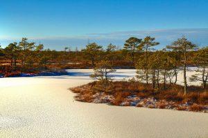 Латвия, зимний пейзаж