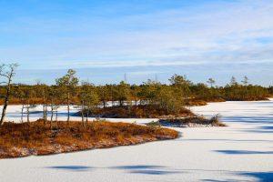 Латвия, зима