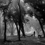 Непал, фотографии