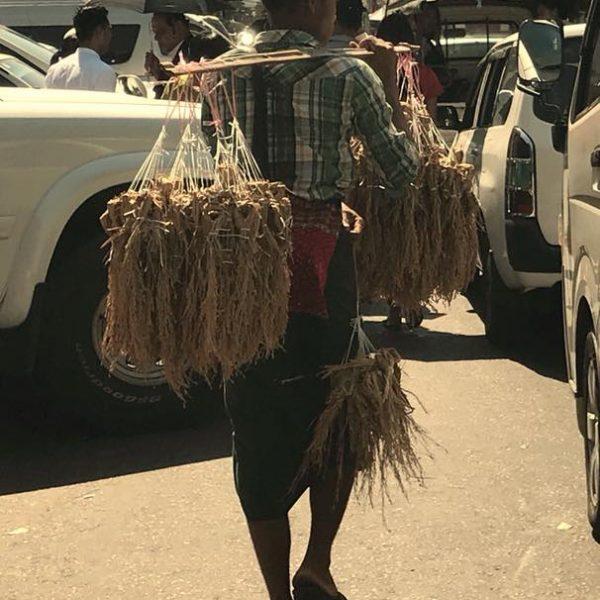 стрит фуд в янгоне