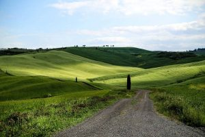 Тоскана поля, тропа