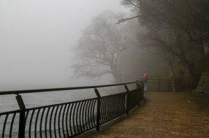Хаконе в тумане