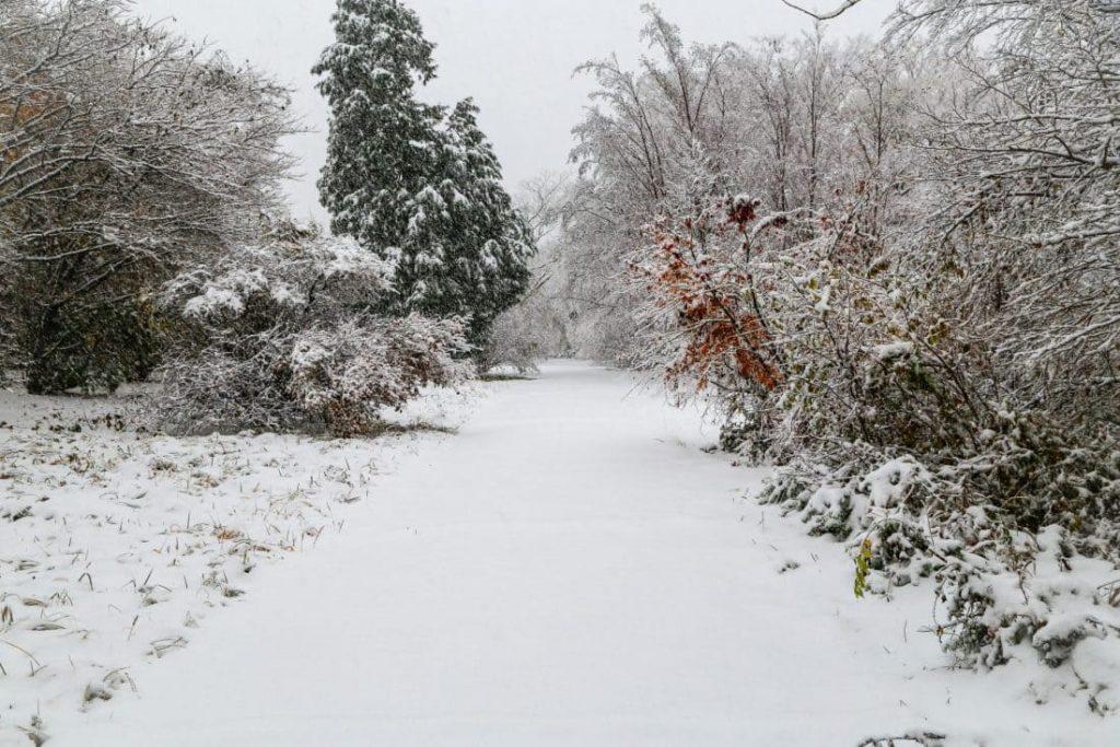 Снег-в-Хаконе, Япония