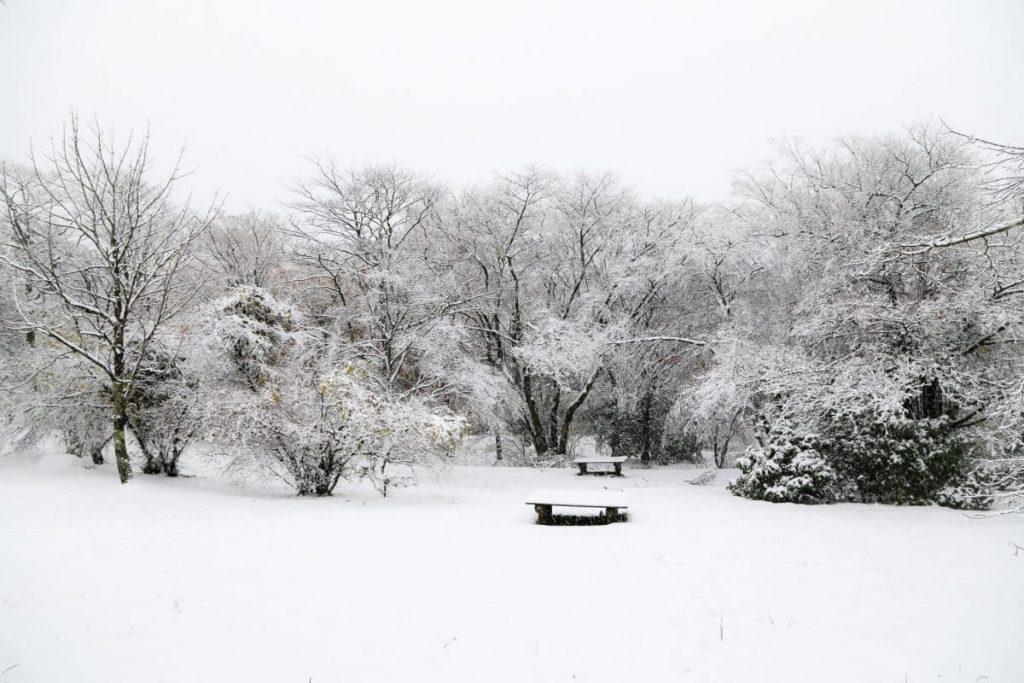 Зима в-Хаконе