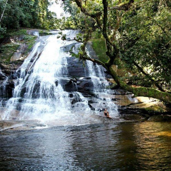 маленький водопад в бразильском лесу