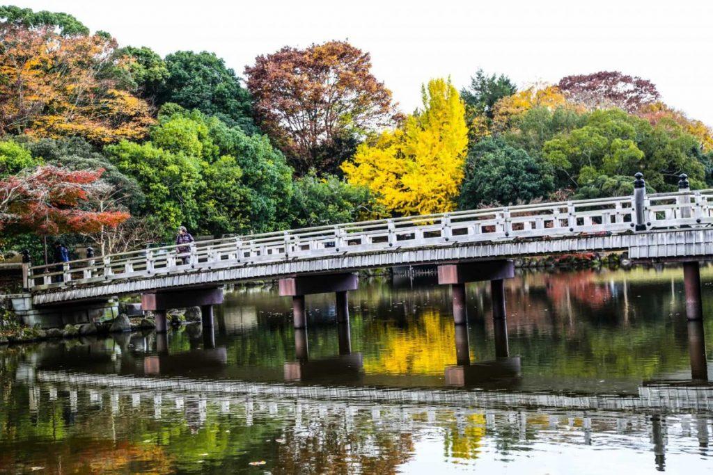 -в-парке-Нары-Япония