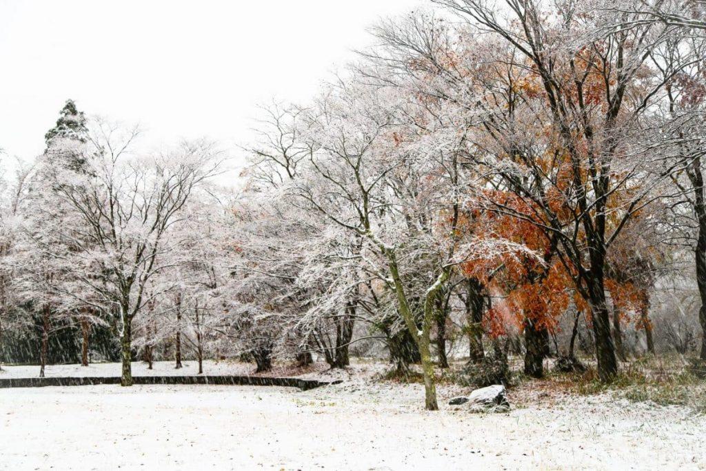 Снег и-дождь-в-Хаконе, Япония