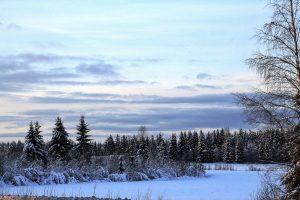 Финляндия, снег