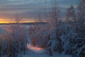 Скандинавские Снега