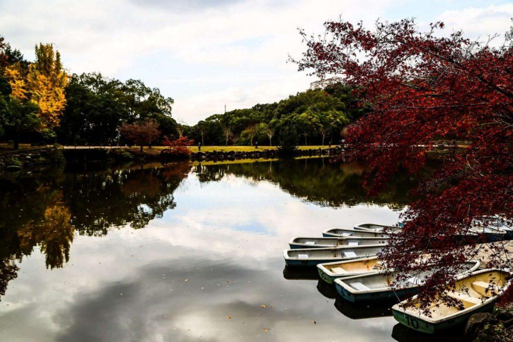 лодки в Парке в Японии