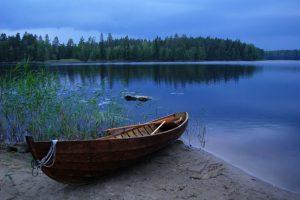 Сказка о нежной и стеснительной жабе, Елена Павличенко