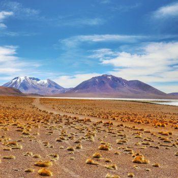 Дорога через пустошь в Боливии