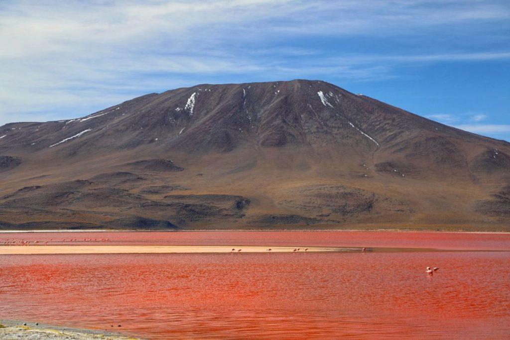 Лагуна Колорадо Боливия