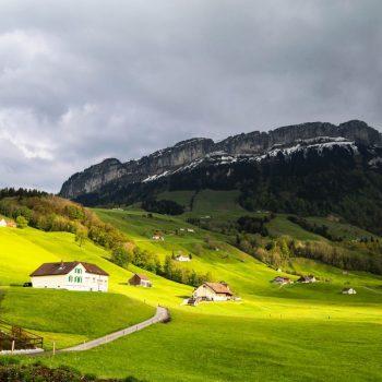 Швейцария, поля