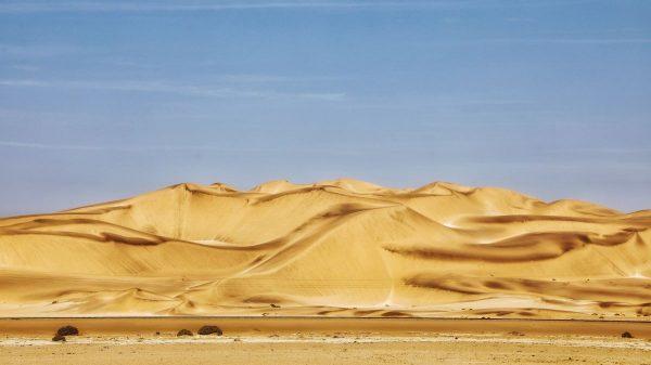 Пустыня Намиб, жёлтые пески