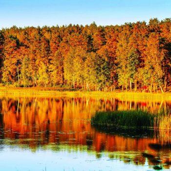 Осень в России, озеро