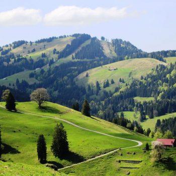 Бавария, горная дорога
