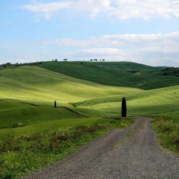 Тоскана, Италия, поля, луга