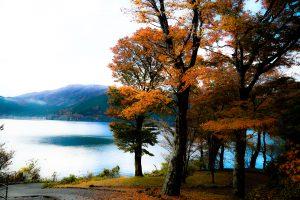 Япония, осень, озеро, природа