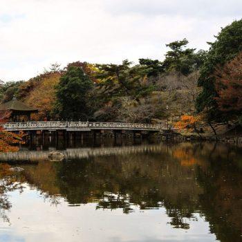 Парк в Наре