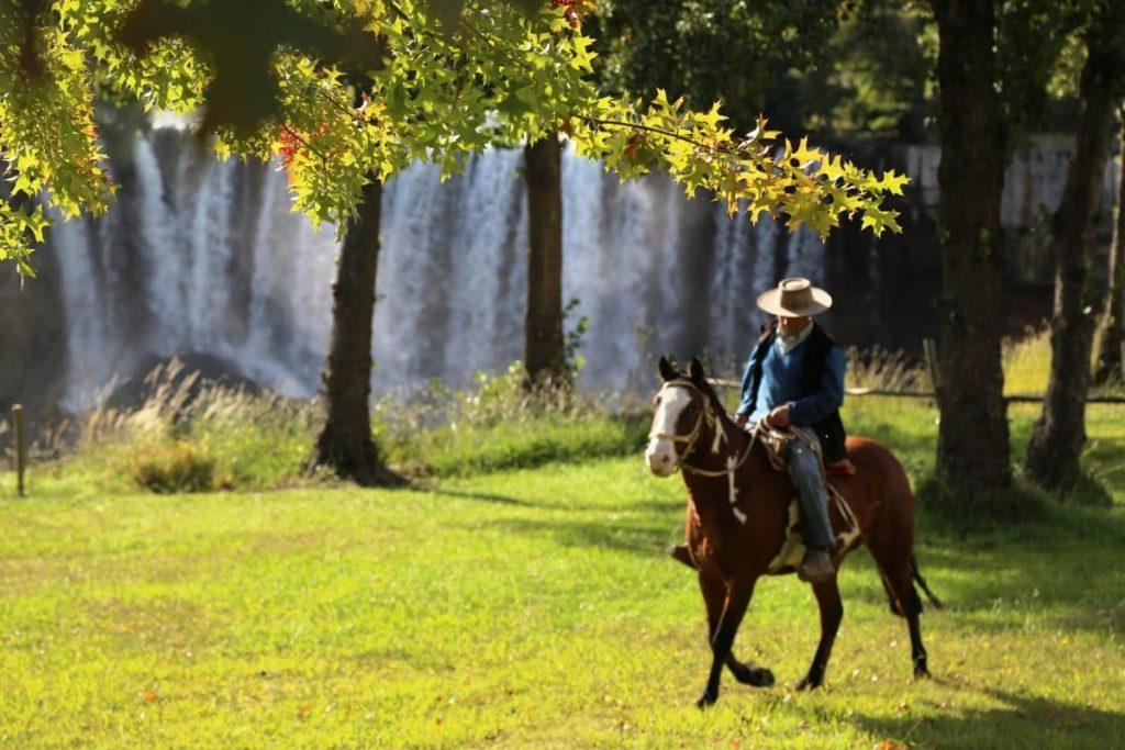 Санта-Крус, лошадь, Чили
