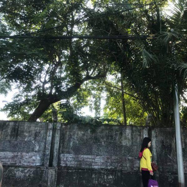город Янгон