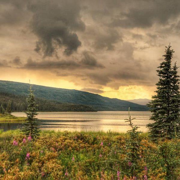 Озеро в Парке Денали