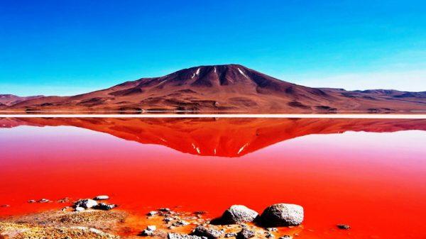 Красная Лагуна Колорадо, Боливия