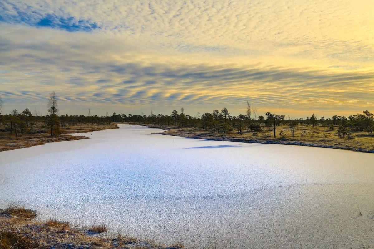 Небо над болотами