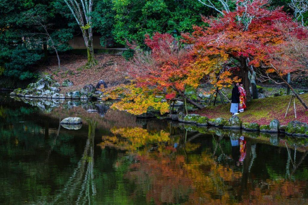 Нара, Япония, осенний парк
